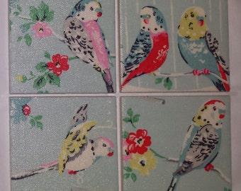 Shabby Chic Ceramic Coasters in Cath Kidston Big Budgies