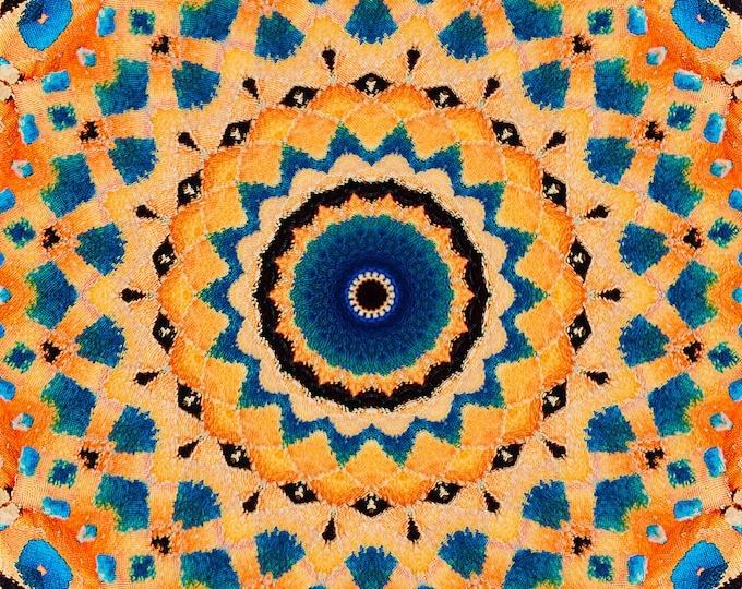 Monarch Butterfly Mandala, Fine Art, Digital Art, Photo Art, Butterfly Art, Nature Art