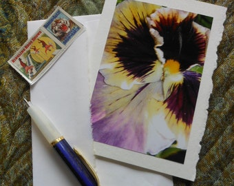 Purple Pansy Flower Photo Blank Notecard with Deckle Edge - #PANS001