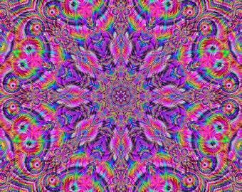 Wondrous Technicolor Fractal - Open Edition fine Art Print