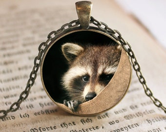 Raccoon Pendant/Necklace Jewelry, Raccoon Necklace Jewelry, Raccoon Photo Jewelry Glass Pendant Gift