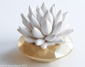 White Succulent Sculpture in Modern Faceted Geometric Container,  Desktop, Tabletop Centerpiece