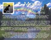 PERSONALIZED Pet Memorial Rainbow Bridge Pet Memorial 8 X 10 Print - Pefect Pet Memorial Keepsake