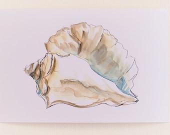 Any 1 Seashell Print, Beach Seashell Print