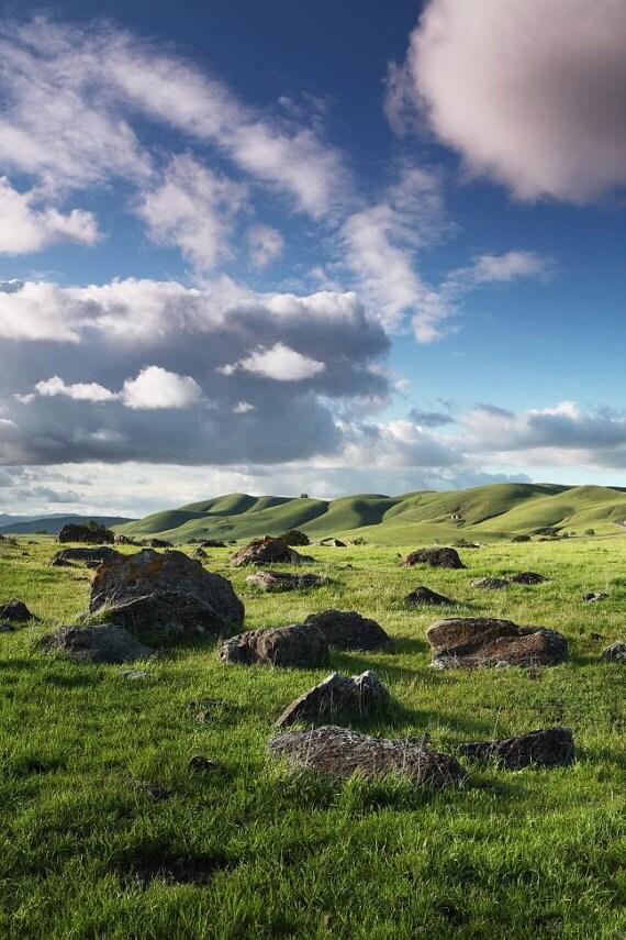 Mt. Diablo California landscape photography. Meadows