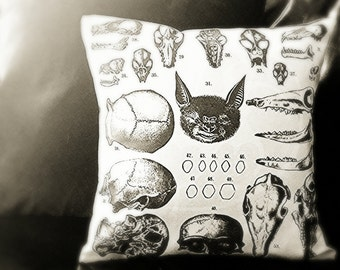 Animal Anatomy Pillow Case