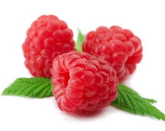 100% Pure Cold-Pressed Organic Unrefined Virgin Raspberry Seed Oil - Imported From Chile - Various Sizes - For Hair & Skin Treatments