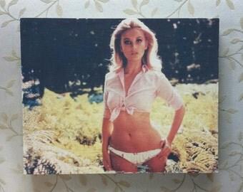 Vintage Babe - Photo Transfer wall art