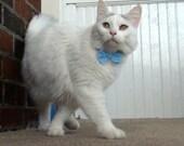 CUTOM order for Sheri - 4 Cat Bow Ties
