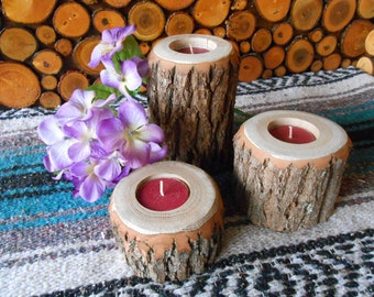 Natural Tree Branch Candle Holders (Sassafras)
