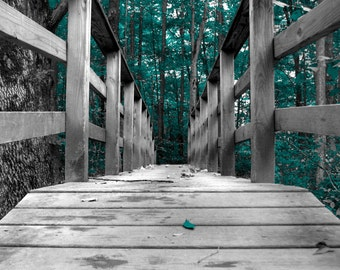 Teal Gray Wall Art Photography, Forest Trees, Bridge, Teal Home Decor Wall Art Matted Picture