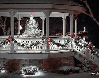 Skaneateles Christmas