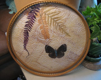 Vintage Asian 11 inche Butterfly Tray