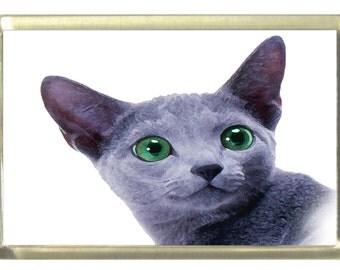 Russian Blue Cat Fridge Magnet 7cm by 4.5cm,