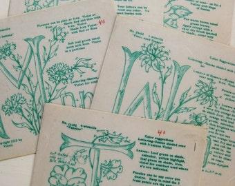 Polly-Dell wax stencils, Saturday-Thur. (Missing Fri.) 1960s uncut stencils. Botanicals. Floral decor. Textile art. Fabric art. Flower art