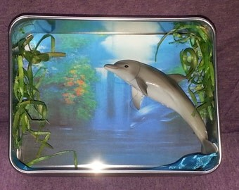 Dolphin Cove Mini Shadow Box