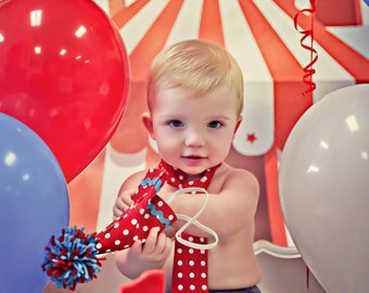 Circus Backdrop, Circus Tents, Dessert Table backdrop, Kids party, Circus Birthday Party, Big Top Tents,