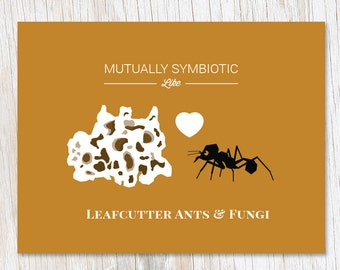 Symbiotic Love: Leafcutter Ants and Fungi Greeting Card | Biology Ecology Valentine Valentines Symbiosis Science Stationery Gift