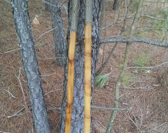 Hiking Stick-Rustic Fire Stained Bamboo Hiking Staff-Built In Survival Compass/Paracord