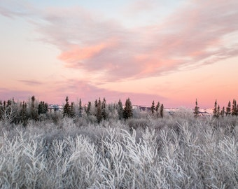 Frosted valley, fine art photography print, winter landscape, winter sunrise, landscape photograph, wall decor, Canadian photography