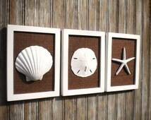 Cottage Chic Set of Beach Wall Art, Sea Shells Home Decor, Beach Decor, Wall Art, Coastal Decor, WHITE Wth Chocolate BROWN Burlap