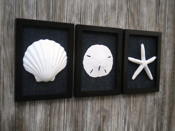 Cottage Chic Set Of Beach Decor Wall Art Sea Shells Home Decor Beach