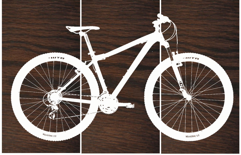 Mountain Bike Wall Art / Bicycle Screen Print / Wood Painting