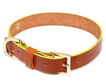 Shane Colorblock XL eco-friendly leather dog collar