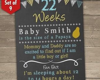 Monthly Pregnancy Countdown, Chalkboard Pregnancy Countdown Pregnancy Chalkboard Sign, Baby Countdown, Weeks 8-40, Set of 9 Boards