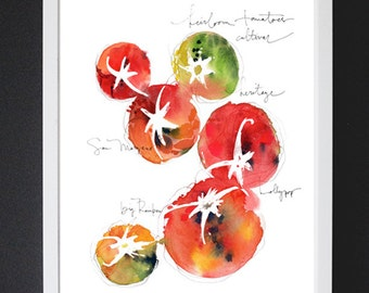 Tomato Study No.2 - Watercolor Art Print