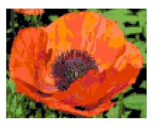 Poppy Cross Stitch Pattern *Pattern Only*