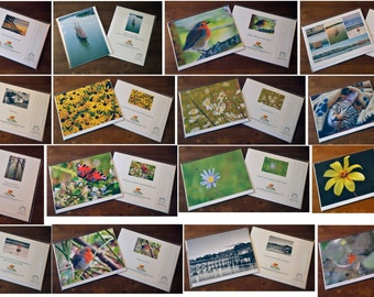 Assorted BLANK greeting cards - fine art photo card - greeting cards for all occasions - Birthday card - Anniversary card - 8x6