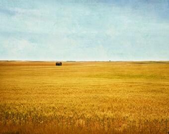 prairie landscape, fine art photograph, print, nature photography, rustic, field