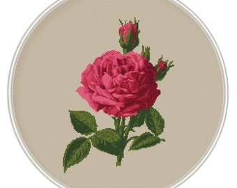 Rose cross stitch pattern, flower cross stitch, cross stitch PDF, pillow pattern, cushion pattern, Instant Download, Free shipping, MCS064