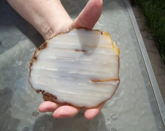 banded waterline  Agate #73