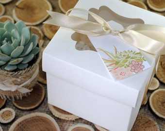 Individual Succulent in Gift Box-Sample Succulent Favor-Thank You Gift-Baby Shower Favor-Party Favor-Bridal Shower Favor-Wedding Favor