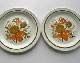Two Midwinter Side Plates, 'Countryside' pattern. Mid century plates. Set of two. Retro homewares 1970's tableware