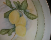 Porcelain Lemon Plate Dish, Home Decor Serving, Ceramic Pottery, Hand Painted by B Marsh