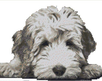 CROSS STITCH KIT- Labradoodle 29cm x 19 cm