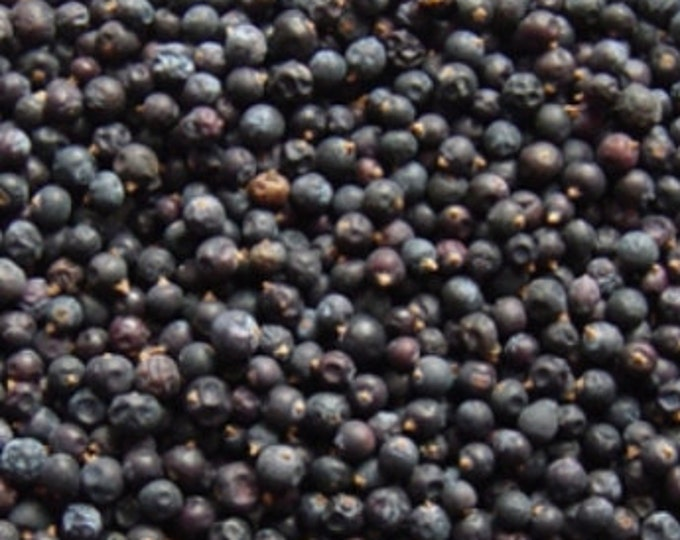 Juniper Berries, Blue Italian - Certified Organic