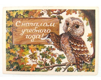 First of September, Knowledge Day, Congratulations Postcard, Back to School, Owl, Unused, Soviet Vintage Postcard, Pokhitonova, USSR, 1985