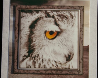 Stunning Handcrafted 3d OWL card with matching gift tag