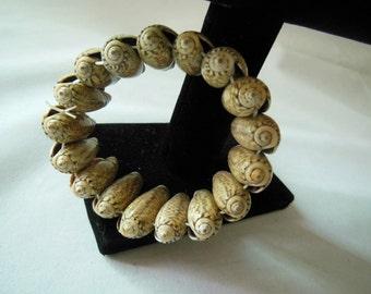 Natural Seashell Bracelet Stretch Bracelet