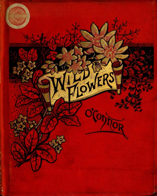 Book Cover Flower : Vintage book cover print wild flowers victorian
