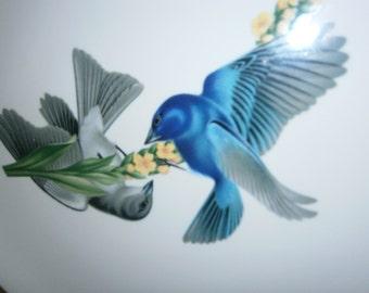SYRACUSE BIRD PLATE