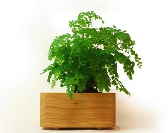 Tanti Design Cedar Planter *MEDIUM*