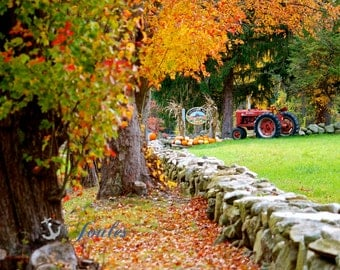 Cucumber Hill, Farm, Rhode Island, New England, Fall Foliage, Autumn, RI Photography, Tractor, Country, Stone Walls