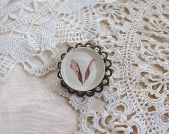 Drawing of two, winged Red Maple seeds set in a Victorian style brooch.