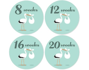 Pregnancy Tummy Stickers, Made in the UK
