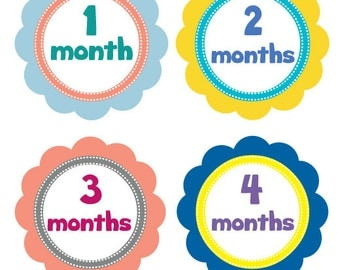 Colorful Monthly Onesie Stickers,Flower Monthly Onesie Stickers for Girls,Peel Off Stickers,Photo Stickers,Body Suit Stickers,Baby Shower